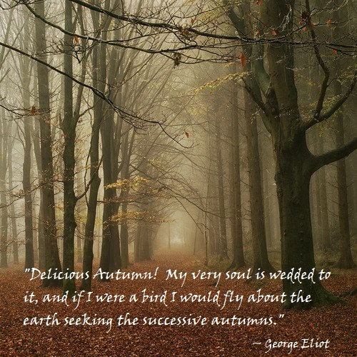 September 22nd Marks 2012u0027s Autumnal Equinox, And The Pagan Celebration Of  Mabon. The Second Of The Three Harvest Festivals, It Is A Time Of  Thanksgiving To ...