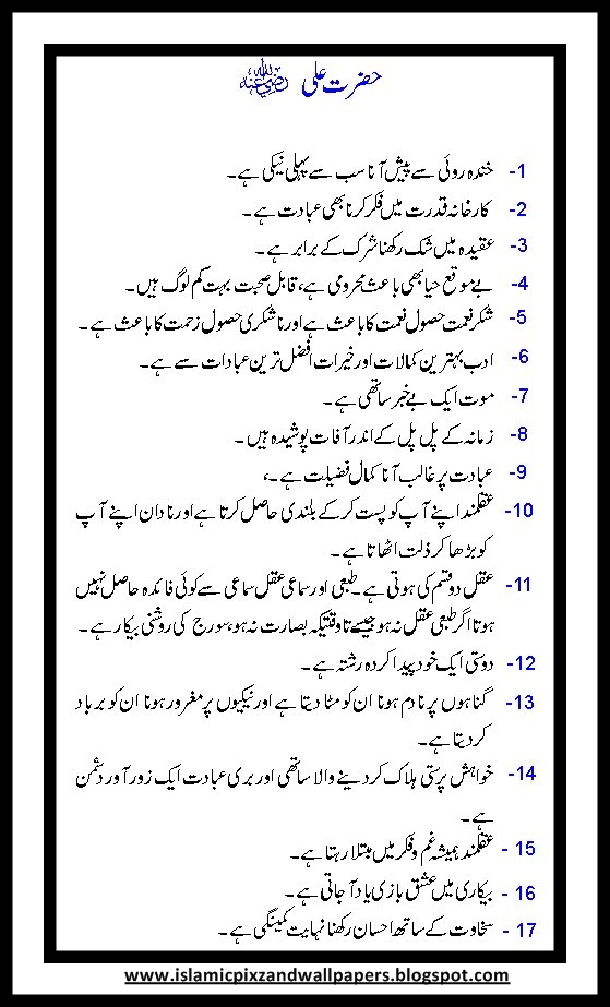 radio essay in urdu