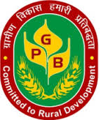 Punjab Gramin Bank Recruitment Notification for Officer Scale
