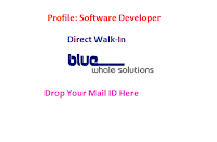 BlueWhale-Solutions-walkin-in-chennai
