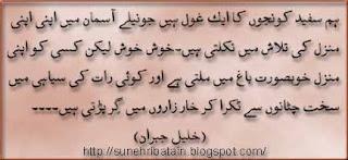 urdu iqtibasat, urdu hikayat, danai ki batain