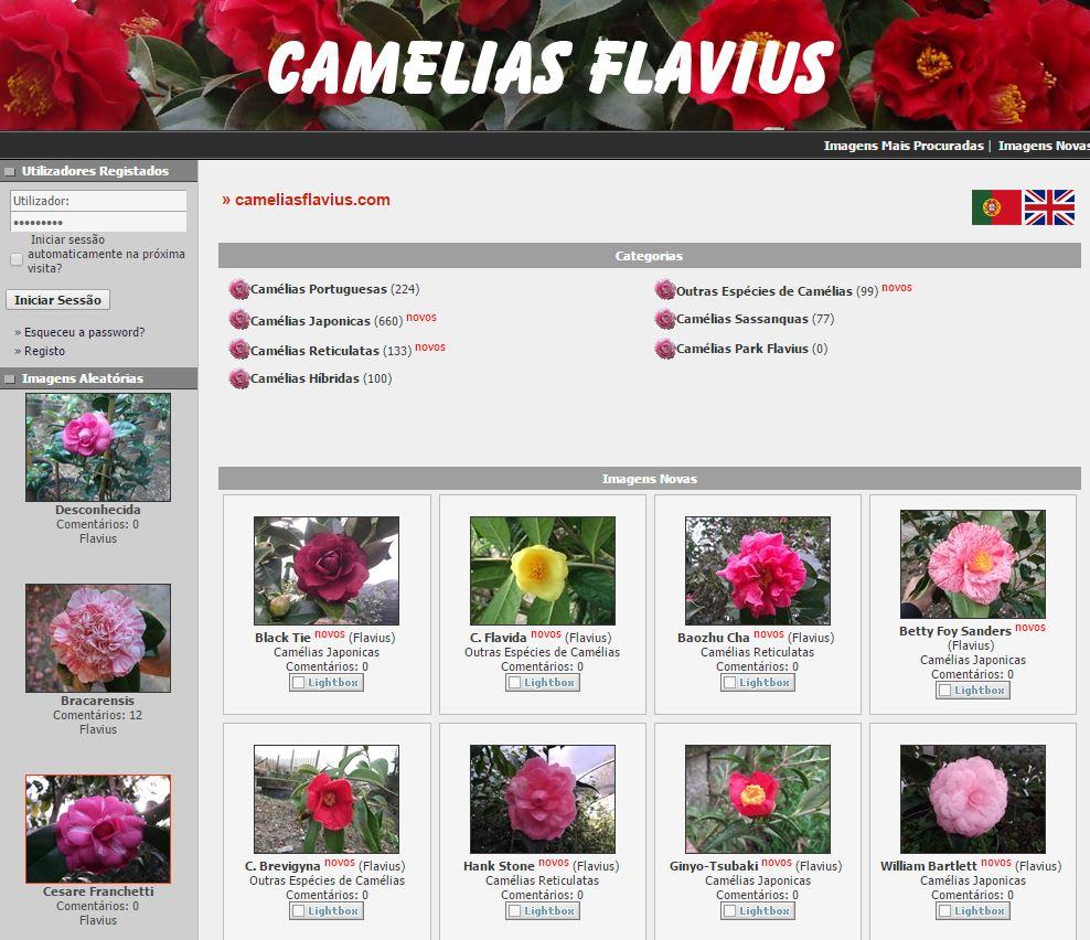 Viveiros Flavius - Portugal