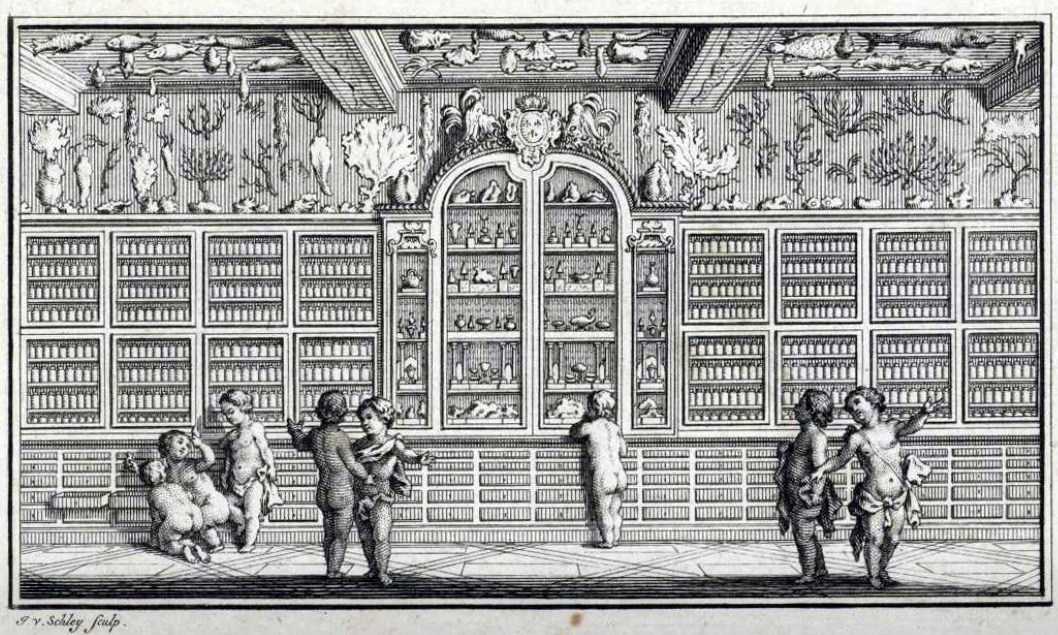 Black and White: Cabinets of Curiosities