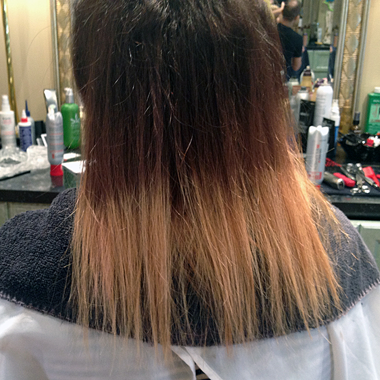 Bleached Hair With Brown Ends Dark Brown Hairs