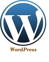 wordpress programming