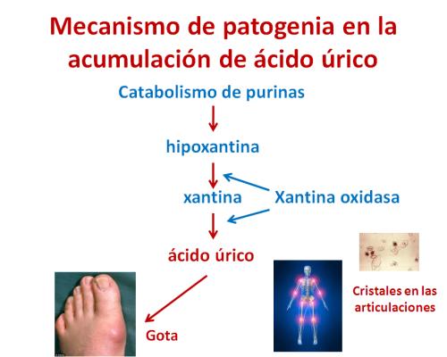 acido urico maos sintomas como disminuir el acido urico en el cuerpo humano como curar la gota de las manos