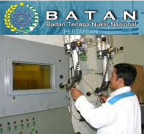 PT Batan Technology (Persero) Jobs Recruitment S1 Accounting & Nuclear Engineering July 2012
