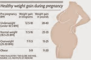 Average weight gain at 27 weeks pregnant