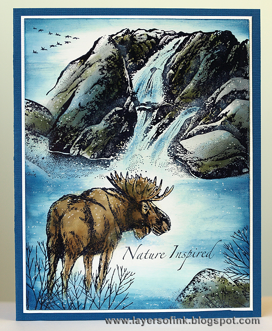 Elk at waterfall - Layers of ink