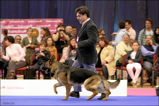 EUKANUBA GOLD WINNER 2011