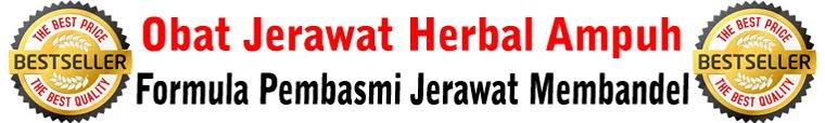 Jerawat | Obat Jerawat | Obat Jerawat herbal | Obat Jerawat Alami | Obat Jerawat
