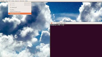 In Terminal open Edit->Profile Preferences