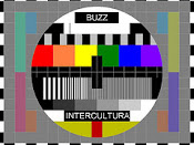 buzz intercultura Lgbqt