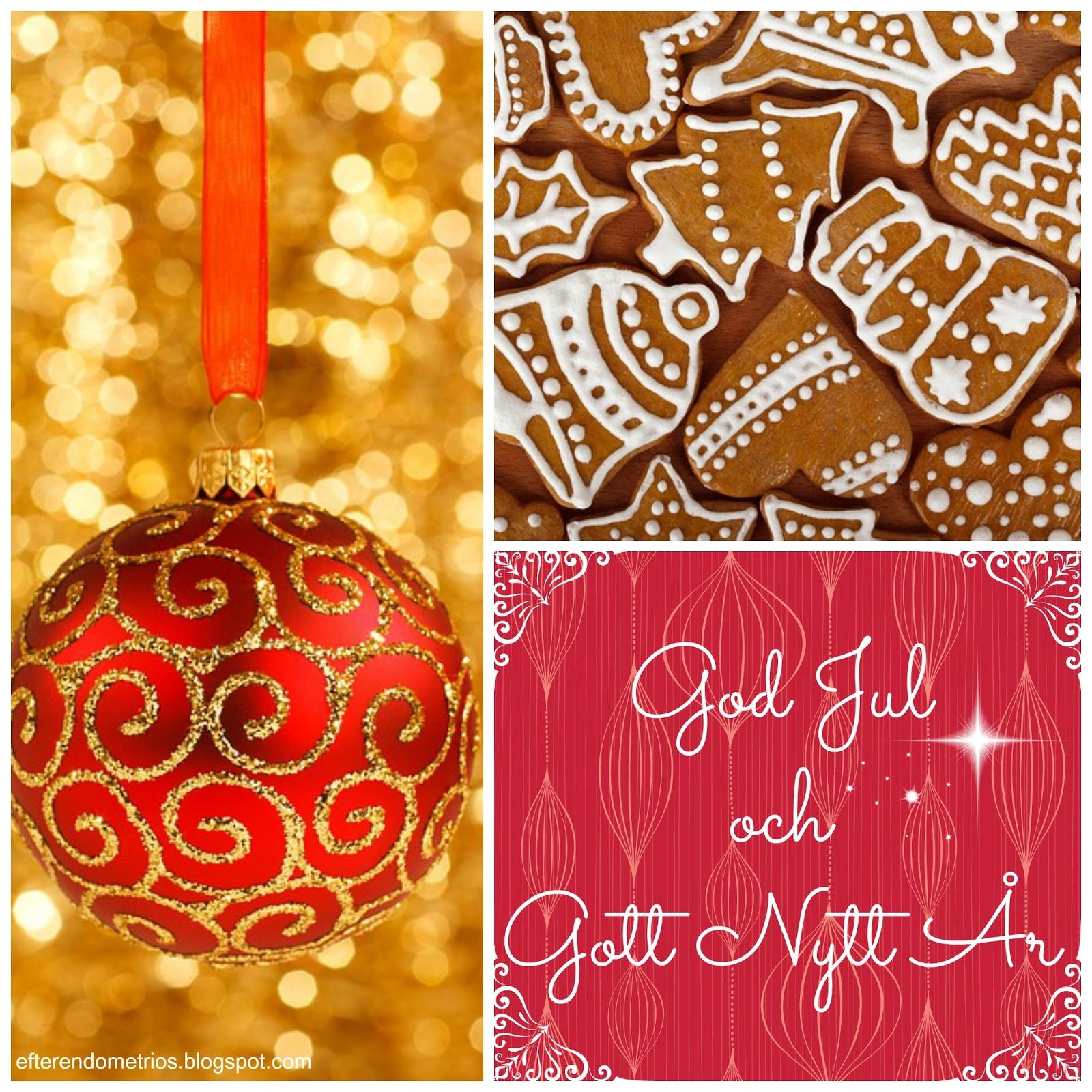 God Jul och Gott Nytt År från Efter Endometrios