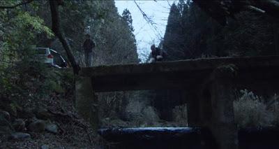 Cold Fish / Tsumetai nettaigyo (2010)