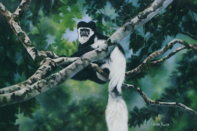 Colobus Monkey - Oil on Canvas by Laura Curtin