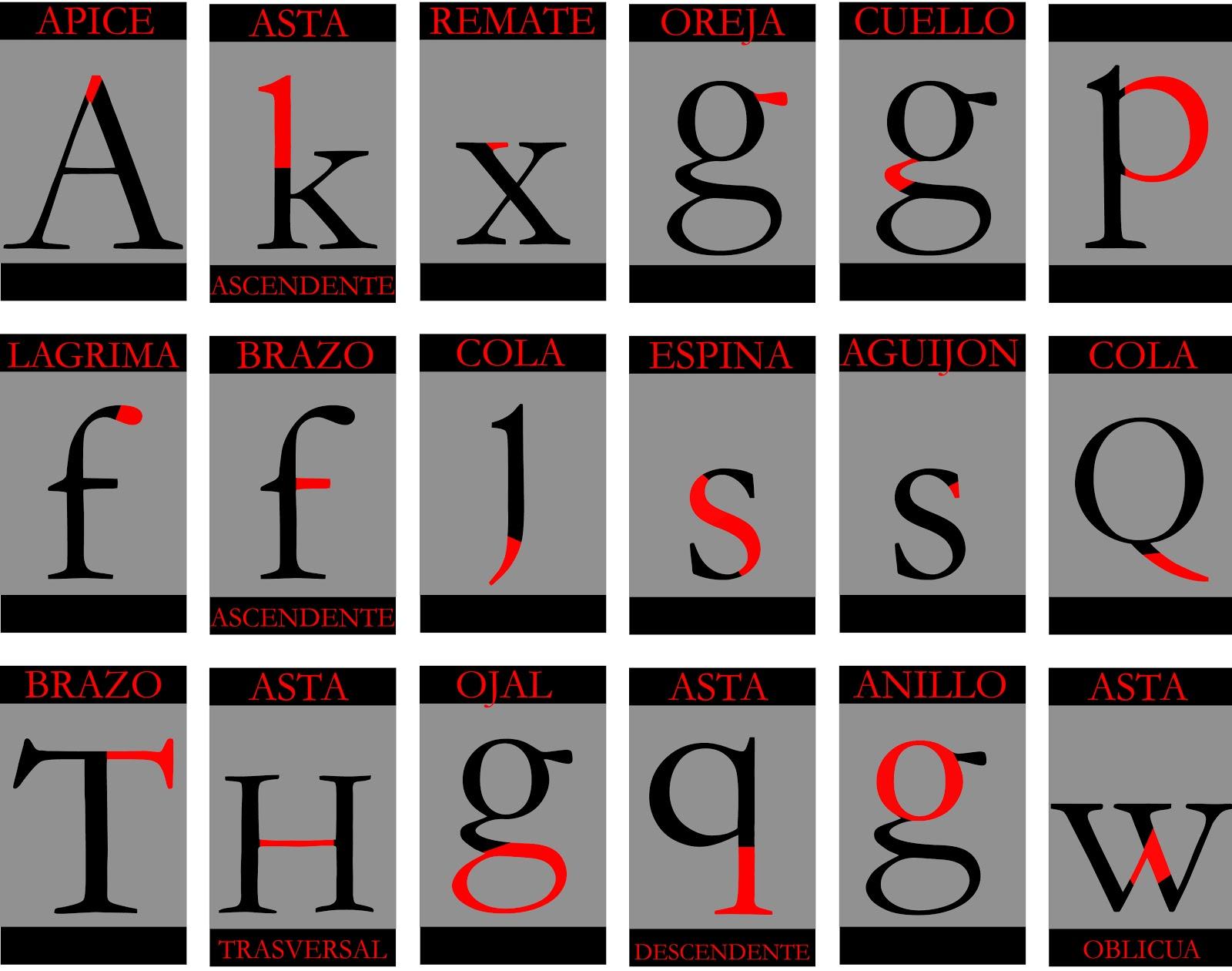 UD 4 A Anatomía del tipo y tipometría. | Tipografía 2ºESDG