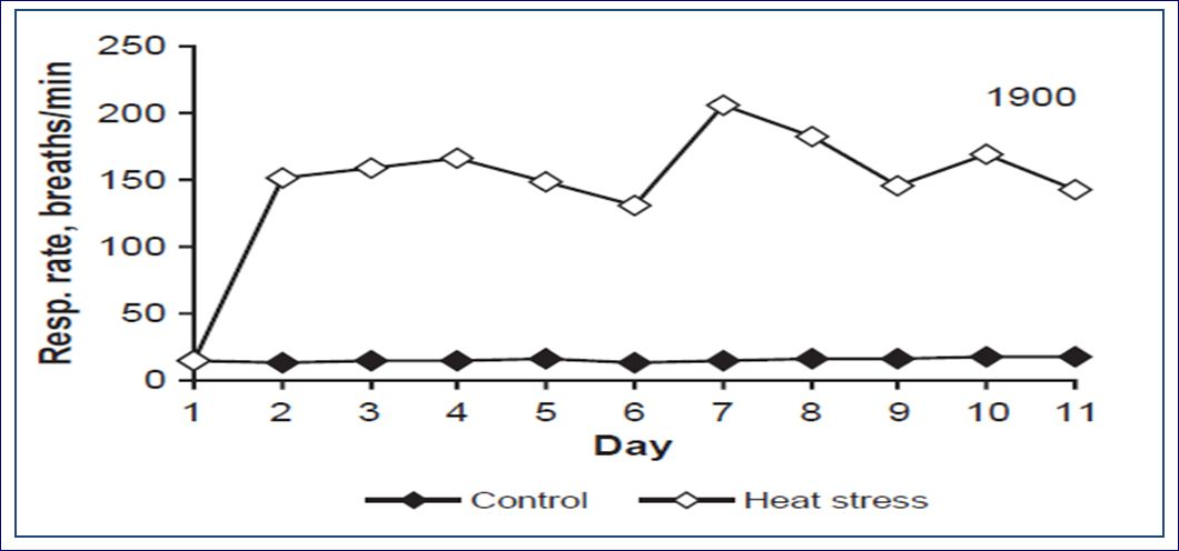 the effect of heat on the rate of respiration Transpiration and respiration of fruits and vegetables  and heat the effect of respiration upon the  the respiration rate is itself a function of.