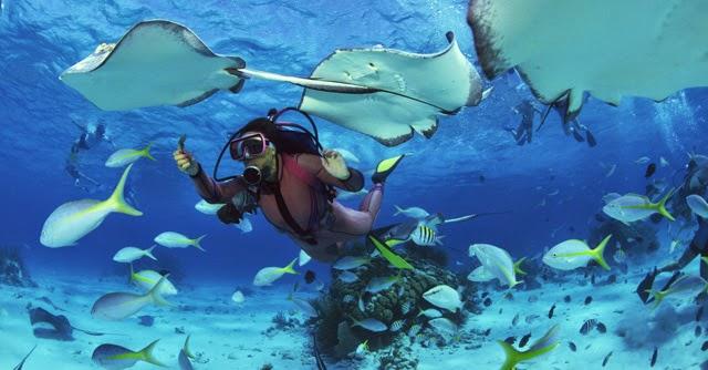 7-tempat-menyelam-terbaik-di-indonesia
