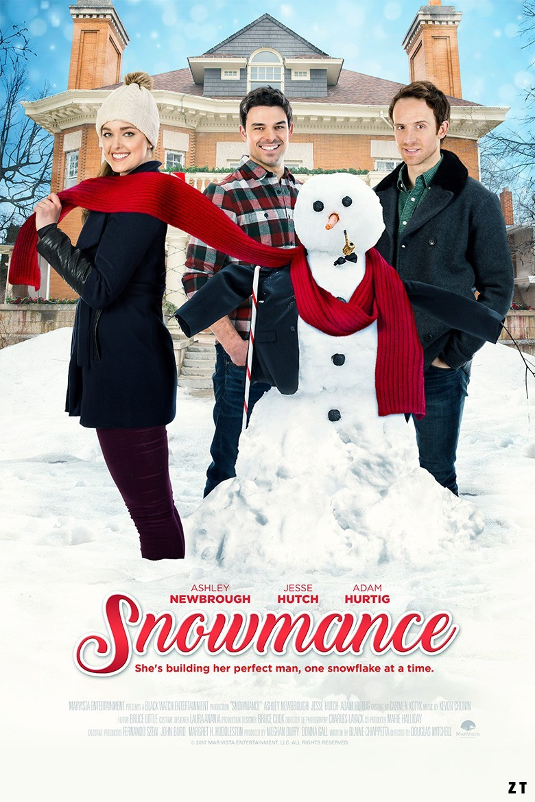 Le fiancé de glace [HDRip] [Télécharger] [Streaming]