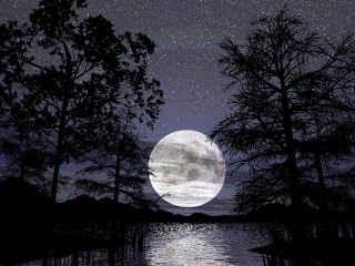 Malam Lailatul Qadar – Keistimewaan dan Tanda Malam 1000 bulan