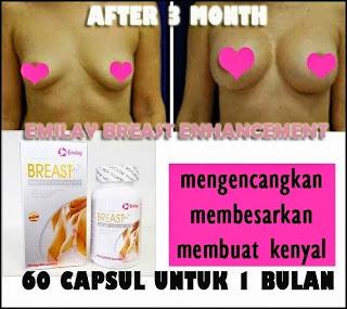 Hasil Pemakaian Suplemen Pembesar Payudara Emilay Breast Enhancement