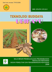 Teknologi Budidaya UbiKayu/Singkong