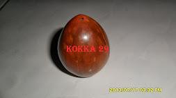 KOKKA 29