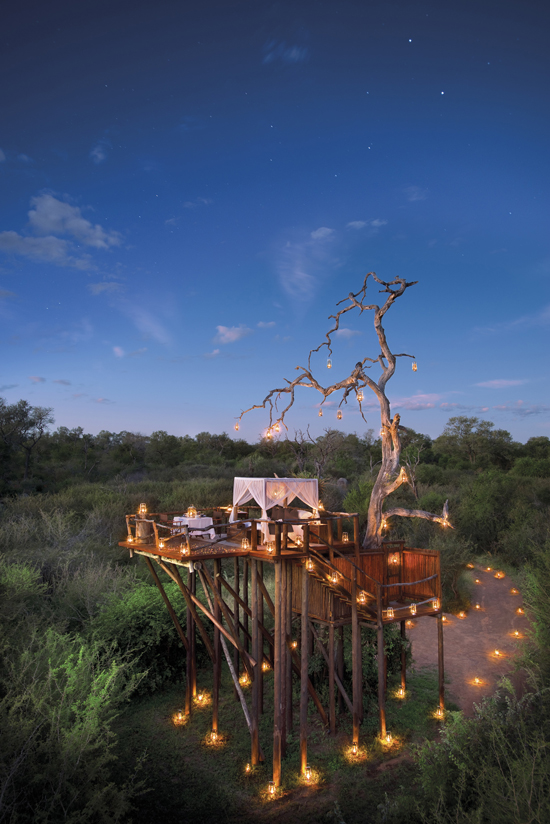 Safari Fusion blog | The ultimate Valentine's dinner in a treehouse under the stars | Chalkley Treehouse, Lion Sands Private Game Reserve South Africa