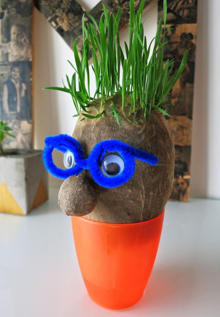 Manualidad y cuento el señor Hortiga hecho con tierra y semillas en media15