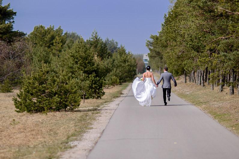 vestuvinės nuotraukos prie pušų