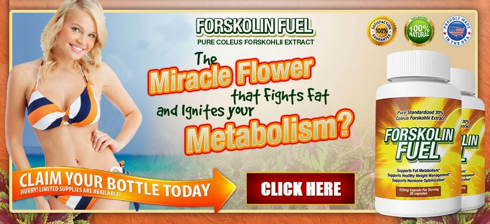 Dr Oz Belly Blaster Supplement  Forskolin  Forskolin Fuel Review