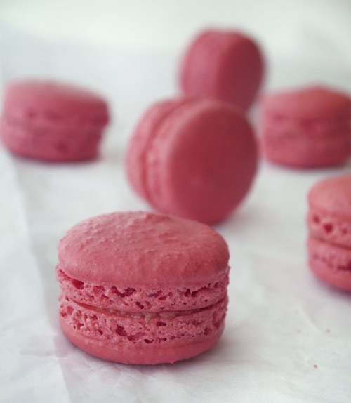rhubarb and blood orange macarons