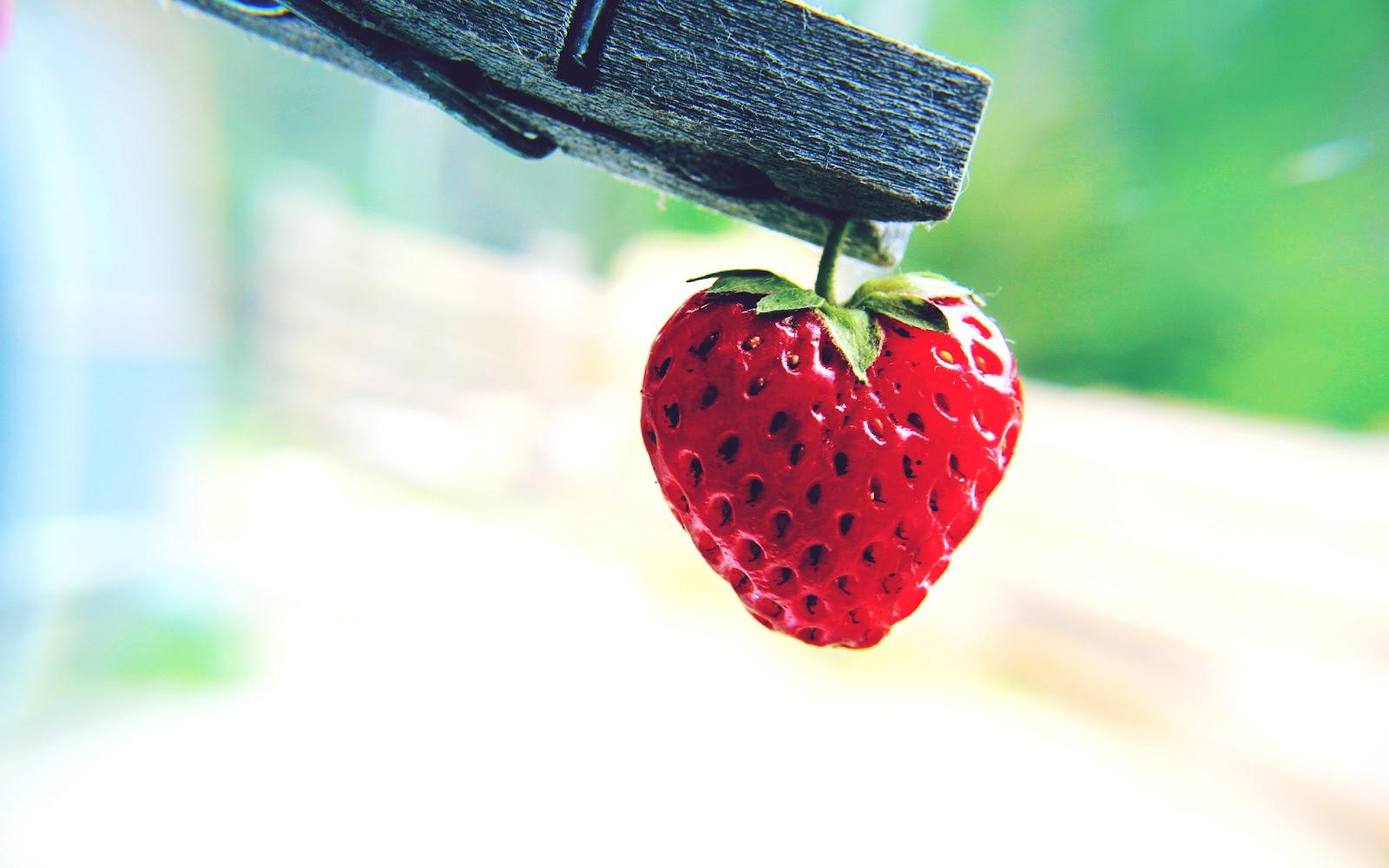 fruit strawberries 4 - photo #7