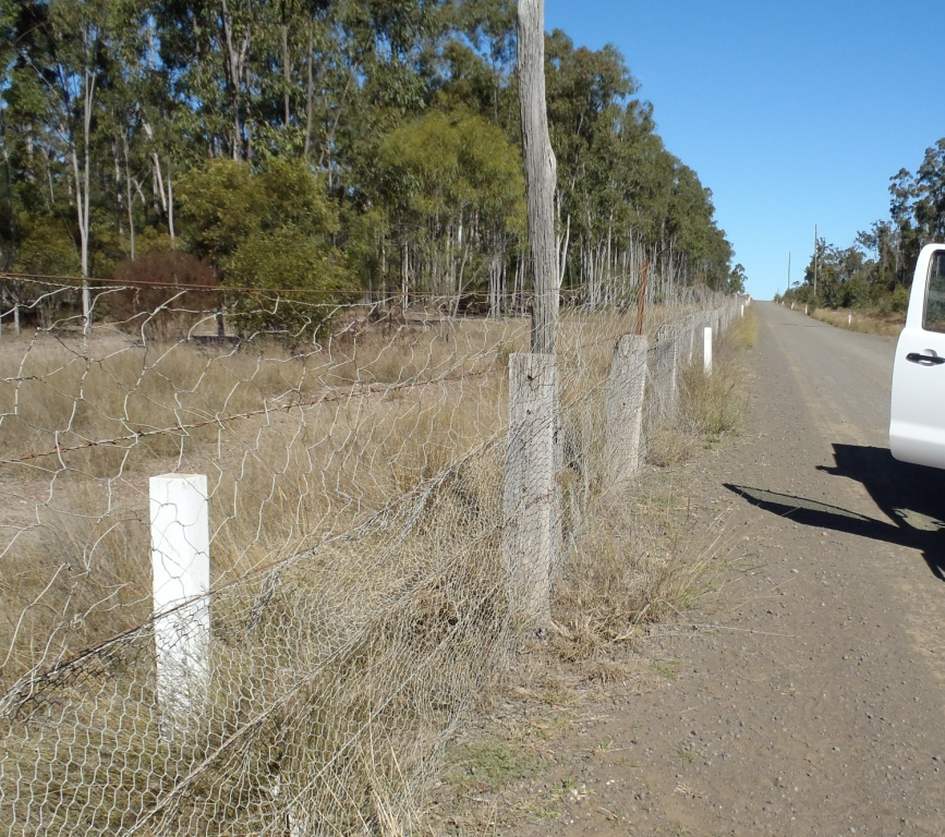 rabbit proof fence physical journeys And other groups can use to promote a healthy lifestyle and increase physical  race tournaments are distance based journeys where  rabbit-proof fence moore.