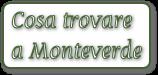 cosa trovate a Monteverde