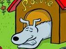Köpek Macerası