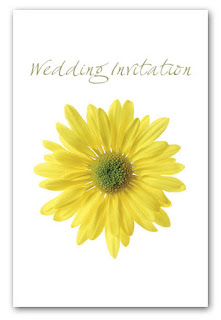 Daisy wedding cards