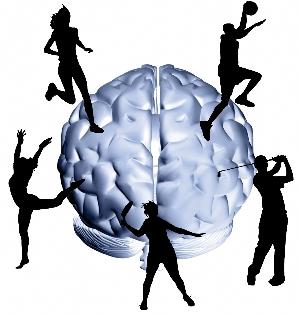 Brain Exercise4