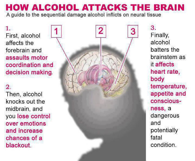 How Alcoholism Works: Alcohol and the Brain