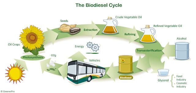 Menos emisiones con biodiesel