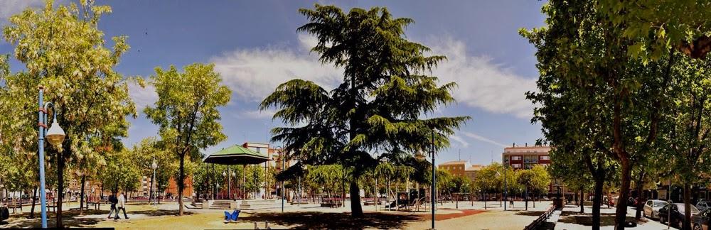 árboles del parque Garrido, Salamanca