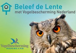 Beleef de Lente!