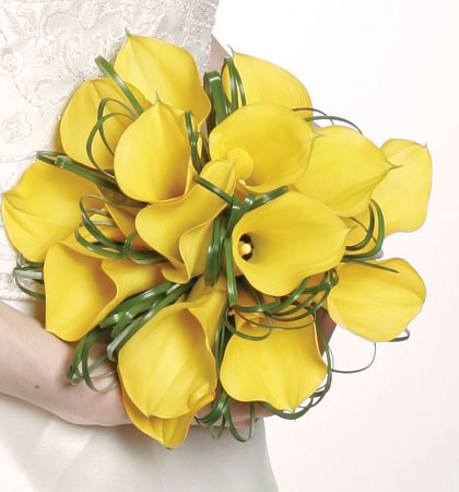 yellow Calla lilies wedding Your wedding preparation marvelous dreamy