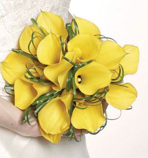 yellow Calla lilies wedding