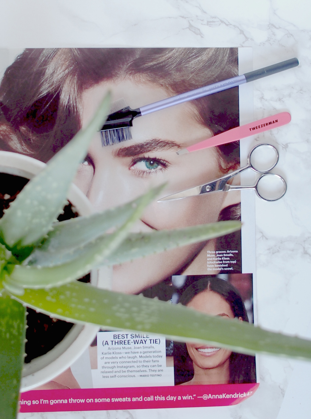 How to maintain Bold brows