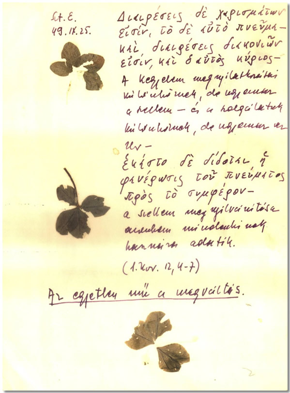 Hamvas Béla, napló