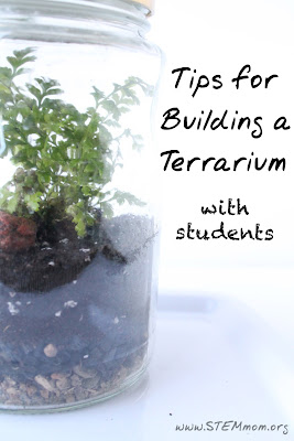 Tips for building a Terrarium with Students: STEMmom.org