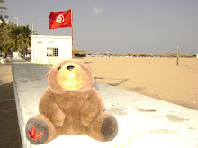Teddy Bear in Tunisia