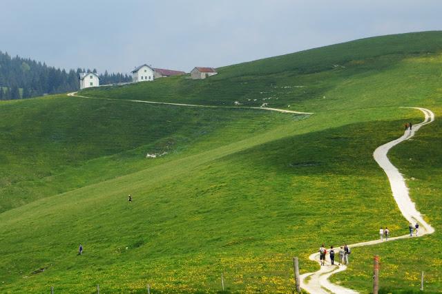 escursione per le malghe sull'altopiano di asiago